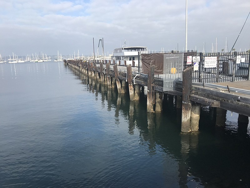 The seaweed farm will take root at the end of the Grape Street Pier pictured ...