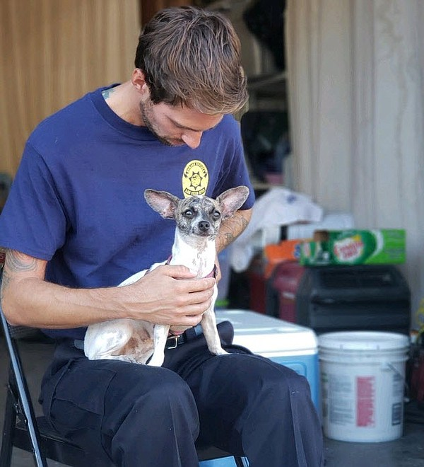 A member of the San Diego Humane Society's Emergency Resp...