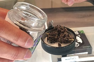 High Hopes For Legal Marijuana Businesses In Chula Vista