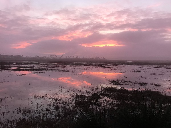 Sun rises over Tijuana River Estuary on Jan. 18, 2019