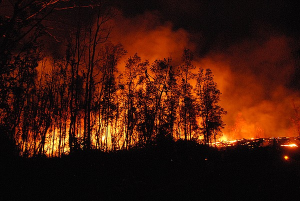 Smoke and lava seen in the distance through trees. Hawai'...