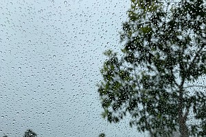Photo for Light Rain, Strong Winds Expected In San Diego County