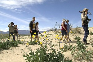In Borrego Springs Tourism, Farming Industries Face Uncer...