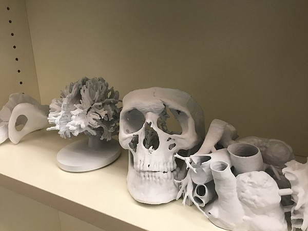 Three-dimensional models of hearts, skulls and other orth...