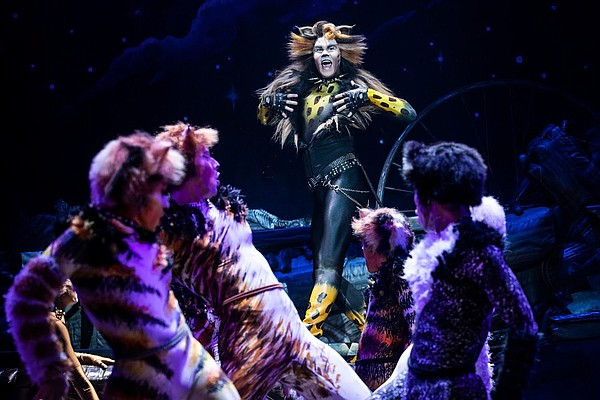 A 2019 photo of actor McGee Maddox as Rum Tug Tugger in