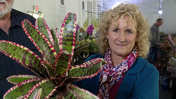 Host Nan Sterman with a bromeliad.