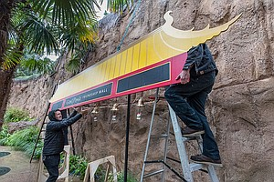 Zoo's Giant Panda Friendship Wall Dismantled, Pandas Set ...