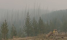 Cougar Creek firefighters inspecting the fireli...