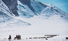 Kazakh nomads on the winter migration, Altai Mo...