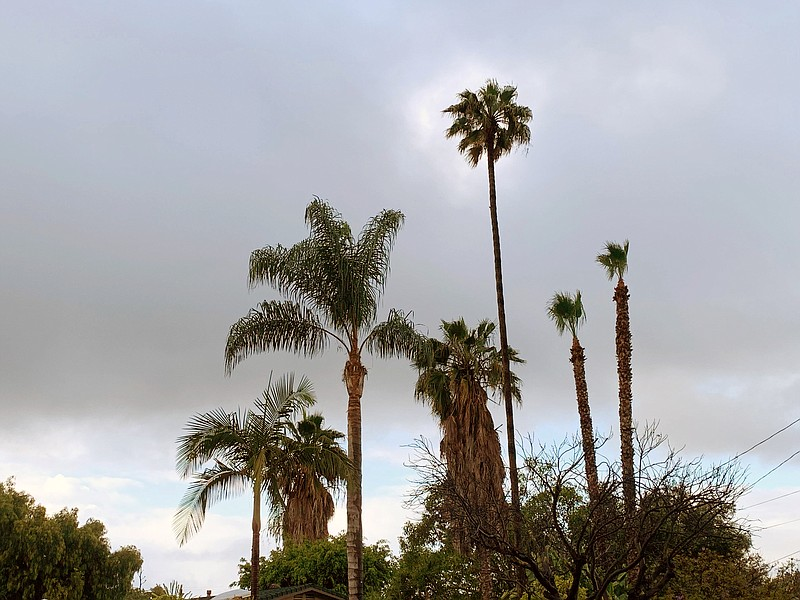 Rain clouds hover in the sky above San Carlos, May 20, 2019.