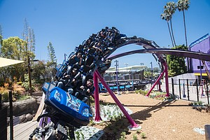 Photo for SeaWorld Banks On Rides To Boost Attendance
