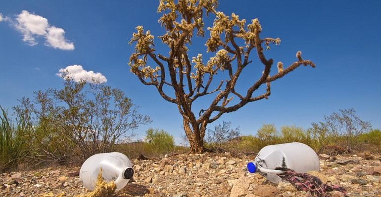 Humanitarian groups leave jugs of water in the desert for migrants in an atte...