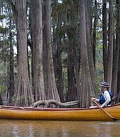 River guide, John Ruskey paddles through the Atchafalaya Swamp in La., fed by the Mississppi, this is the largest swamp in the United States.