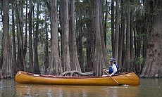 River guide, John Ruskey paddles through the At...