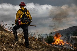 Photo for Controlled Burns Set At MCAS Miramar