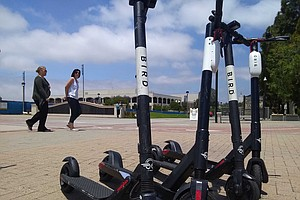 Photo for Faulconer Proposes Late-Night Curfew For Dockless Scooters