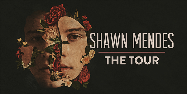 A 2019 promotional poster for Sean Mendes, The Tour