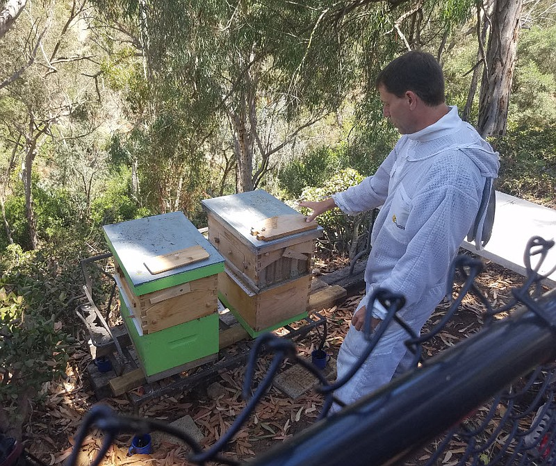 Beekeeper Eric Karpinski tends to his Flow Hives in Mission Hills, July 9, 20...