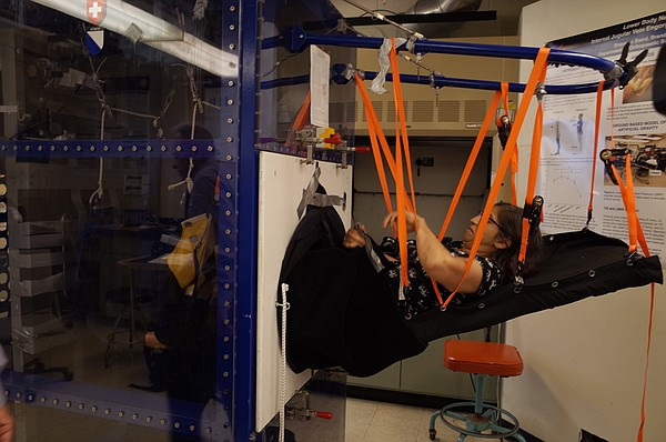 UCSD researcher Brinda Hargens gets strapped into an exer...