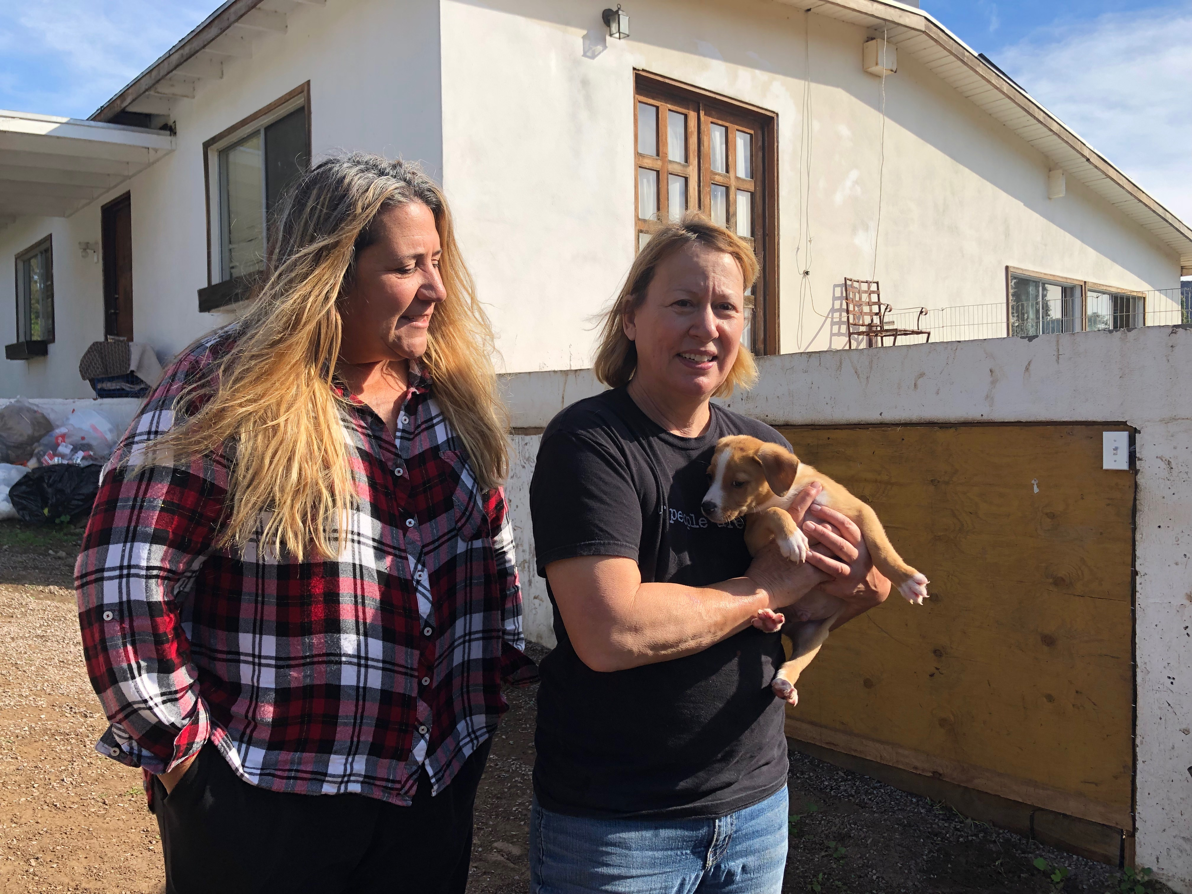 Only Here Podcast: Rescuing Dogs From The Streets Of Mexico And Finding Them Homes in San Diego