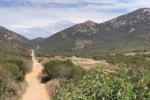 Photo for Heat Wave Coming To San Diego County Mountains, Deserts This Weekend