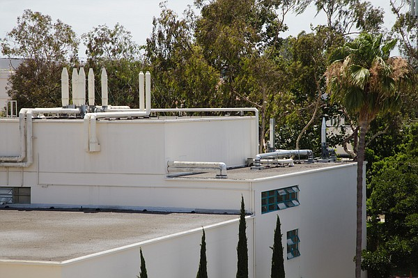 San Diego State University officials closed the Professio...