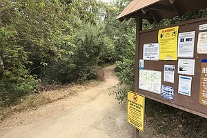 Photo for County Officials Remind Residents Of Potential Tick-Bourne Illnesses