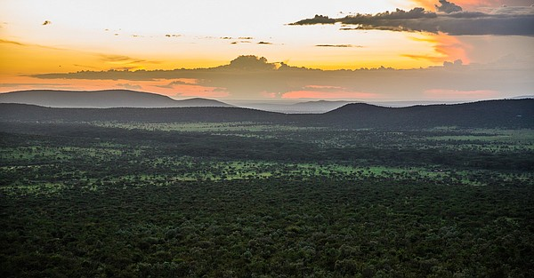 The Olarro Conservancy in the Maasai Mara Reserve in Keny...