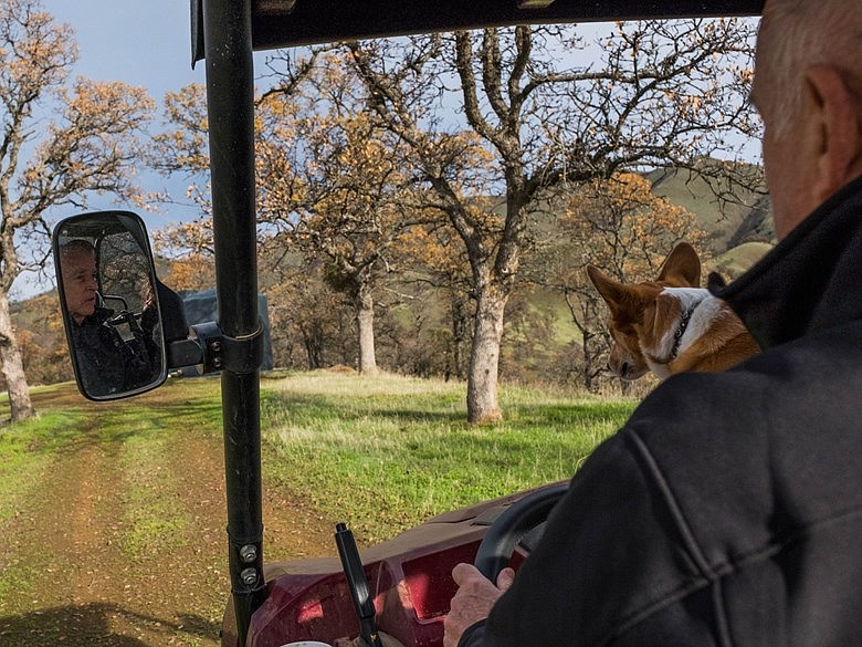 Gov. Jerry Brown rides around his ranch with his dog, Colusa, in rural Colusa...
