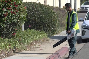 A Split Coronado Council Votes To Ban Gas Leaf Blowers