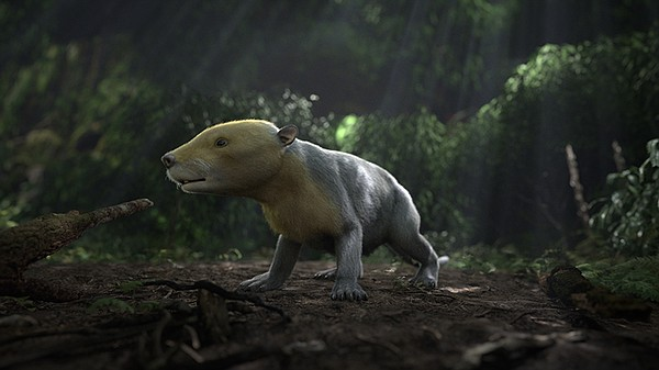 CGI rendering of ancient Taeniolabis mammal taken from th...