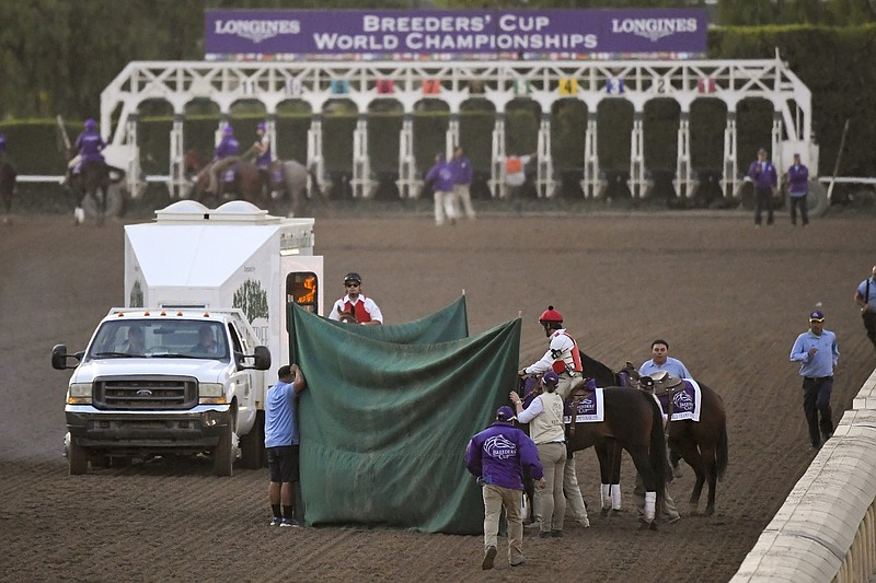 Track workers treat Mongolian Groom after the Breeders' Cup Classic horse rac...