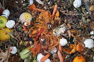 How To Reduce Food Waste This Thanksgiving