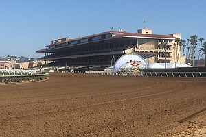 Horse Injured at Del Mar Euthanized After Developing Acut...