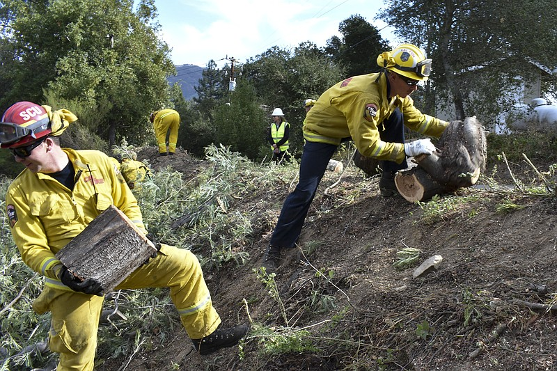 A fire prevention crew hauls away sections of a tree they cut down near Redwo...