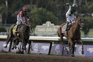 Horse Dies Last Week During Light Running at Santa Anita