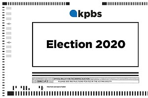 Do You Have Questions About Voting In The March 2020 Prim...