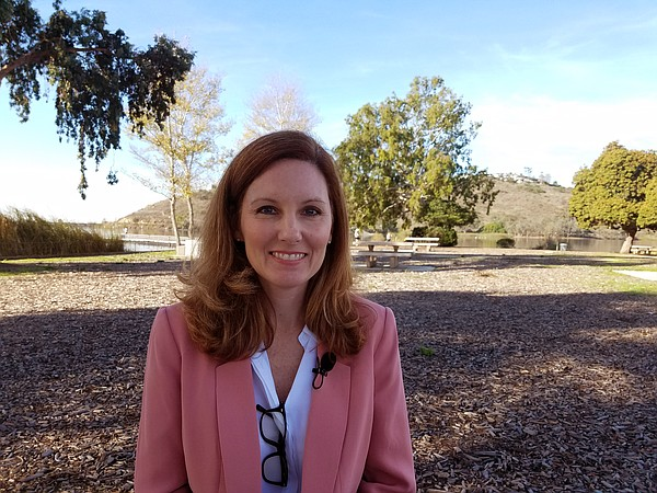 Wendy Wheatcroft, a candidate for San Diego City Council ...