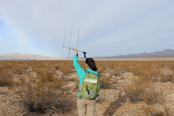 U.S. Geological Survey biologist Felicia Chen uses a rece...