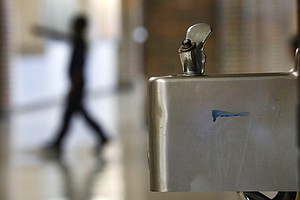 Photo for Bacteria At The Water Fountain: How San Diego Scientists Use E. Coli To Test ...