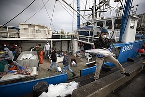 Photo for At Sea During Pandemic, Fishermen Return To Stormy Times