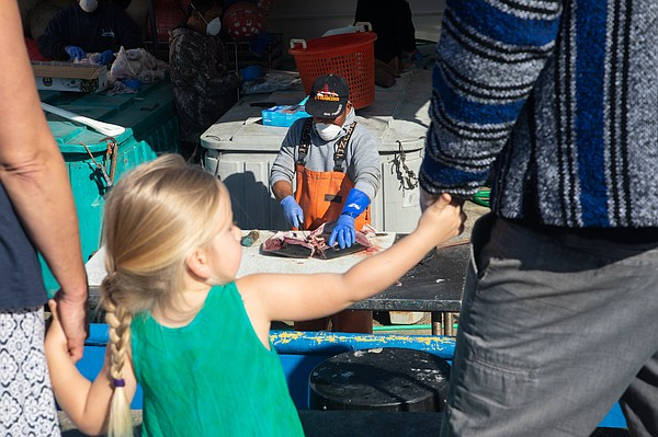 'Porkchop' Fronda cuts fish from aboard the Kaylee H. at ...