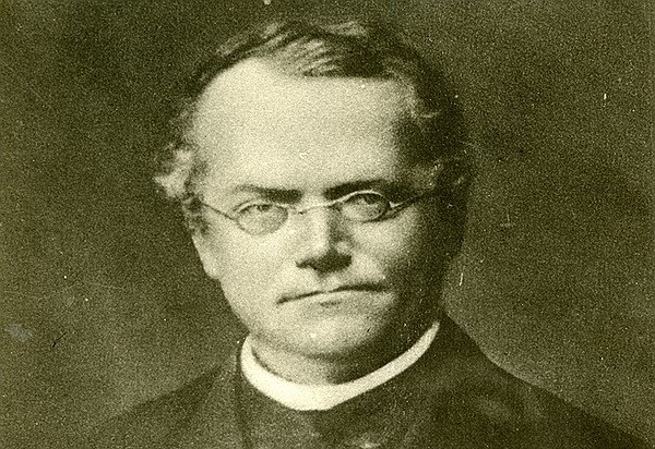 A portrait of Gregor Mendel, a friar at the St. Thomas Mo...