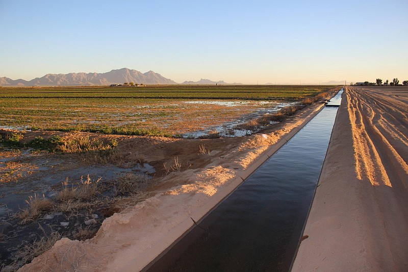 An irrigation canal transports water across farm fields in central Arizona.