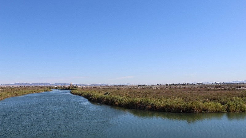 The Colorado River, west of Yuma, Arizona, before it reaches Morelos Dam on t...