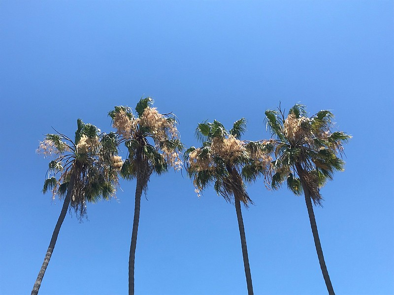 The Fourth of July weekend will be sunny and warm in San Diego County, with h...