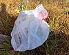 Thin single-use plastic bags, like this one in ...