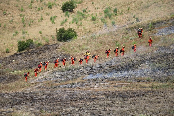 Inmate firefighting hand crews from Puerta la Cruz Conser...