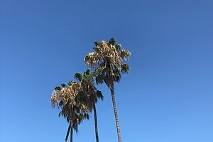 Heat Continues In San Diego Deserts, Cooler Weather Expected Everywhere Else ...