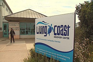 Photo for Living Coast Discovery Center Struggling To Survive During Pandemic